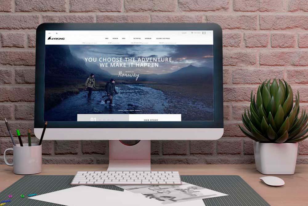 Website Design For Viking Store